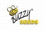 Buzzy Xotica Seeds