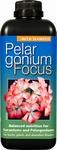 Geranien Focus 1 Liter