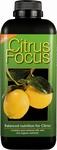 Zitronen Focus 1 Liter
