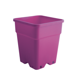 Pflanzen Container 24x24x28,3 cm - Inh. 11 Ltr. Lila